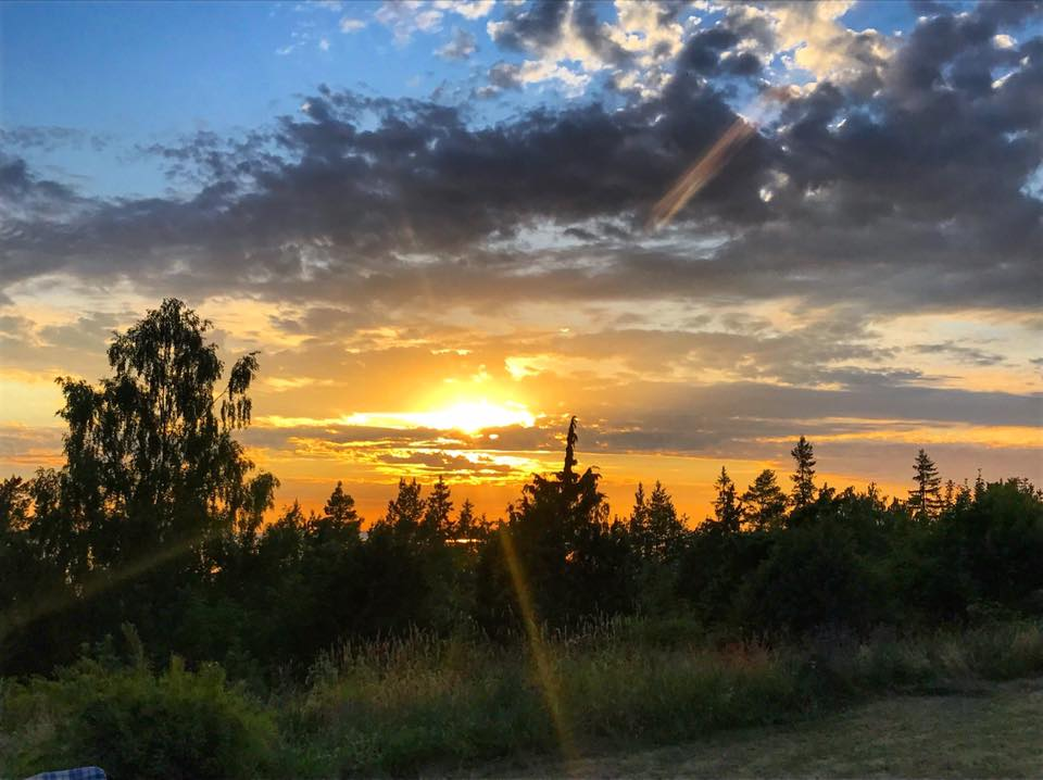 swedish sunset