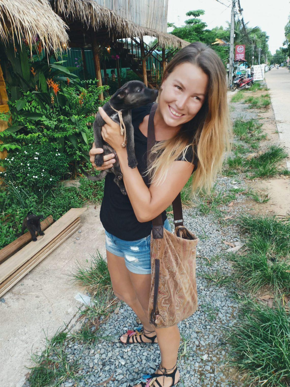 hundvalpar i kambodja
