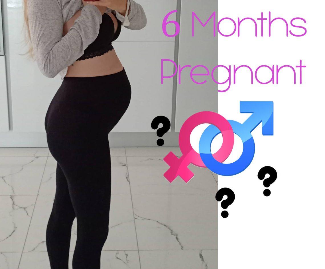 6 månader gravid