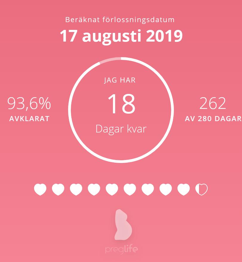 gravid vecka 38