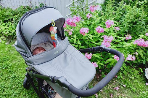 bebis i vagn