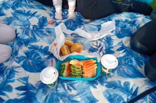 picknick i gräset