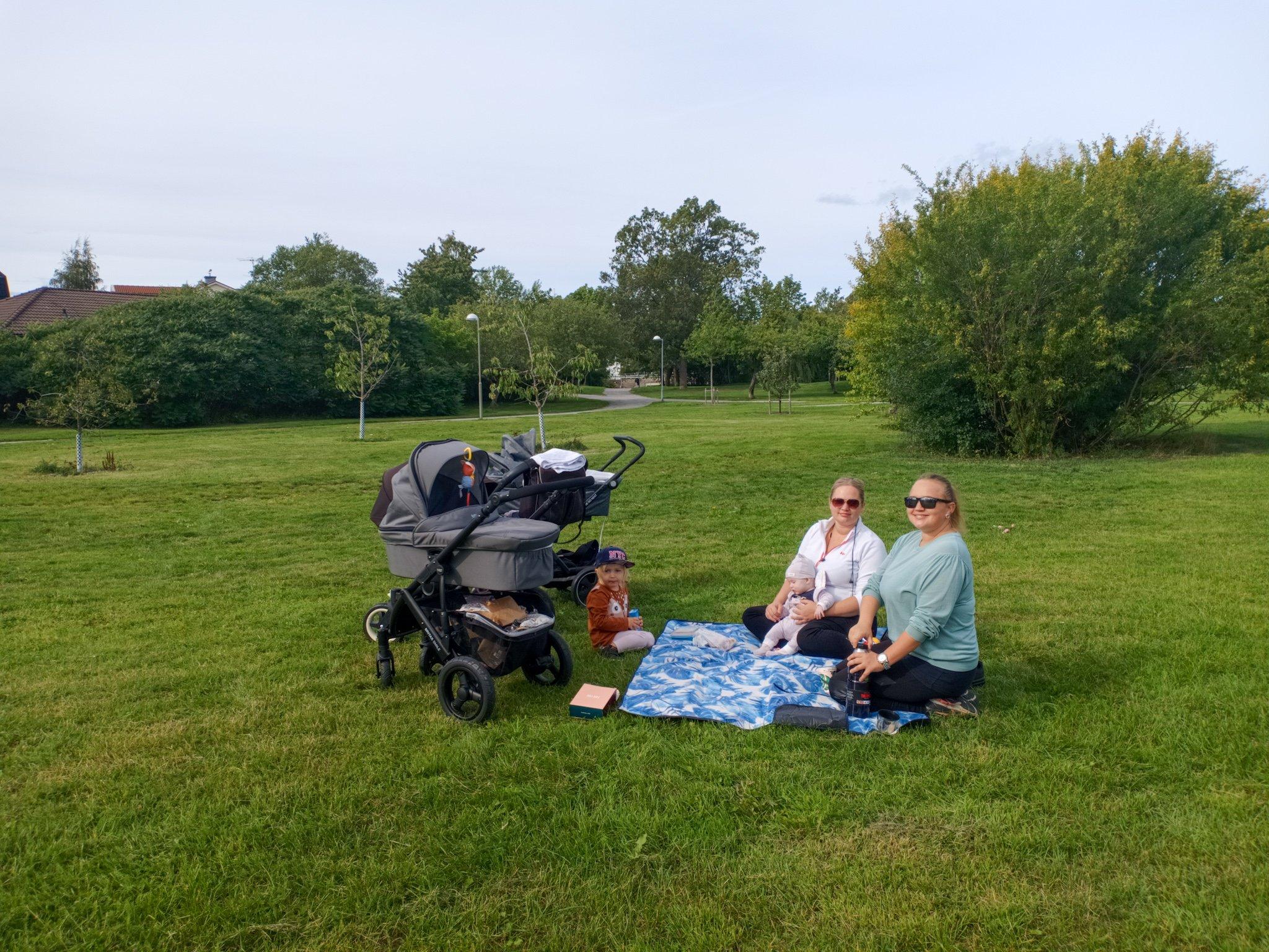 picknick i det gröna